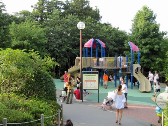 point_playground